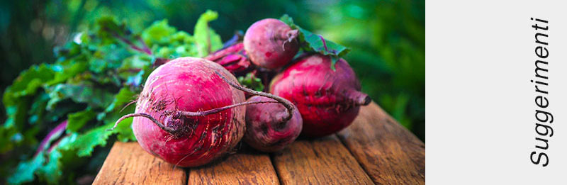 Barbabietola rossa fresca
