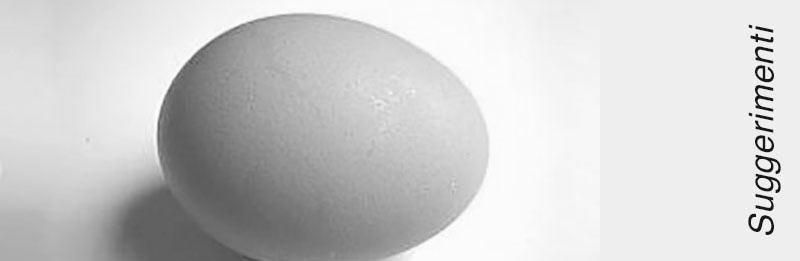 Uovo crudo