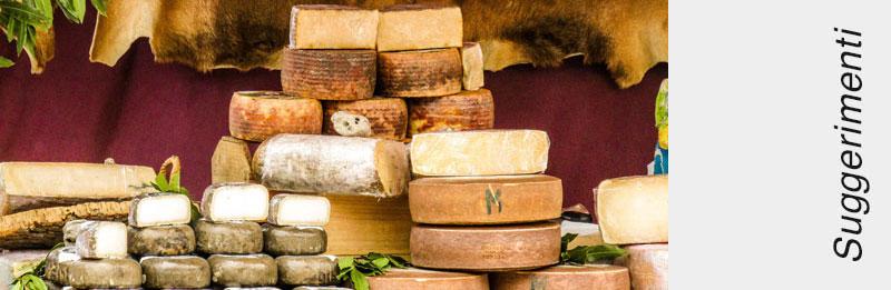 Diverse forme di formaggio stagionato